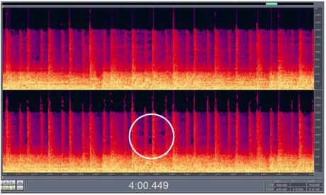 """10 sekunder i 192 KBPS Samme 10 sekunders utdrag viser at musikkfilen har """"svarte hull"""" i det hørbare frekvensområdet."""
