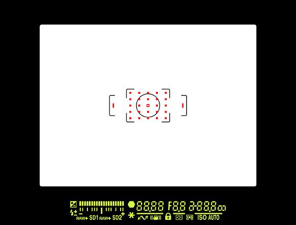 645Z_ファインダー内画像データ