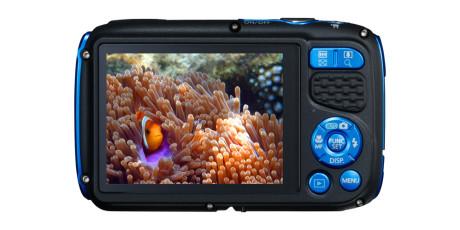 Canon-PowerShot-D30-BLUE-BCK