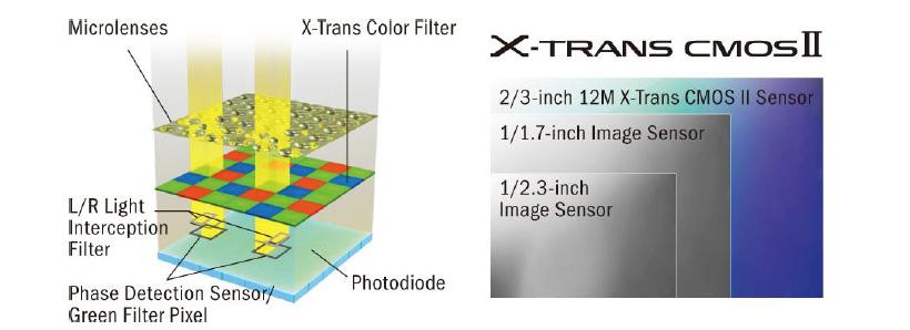 X_TRANS II view