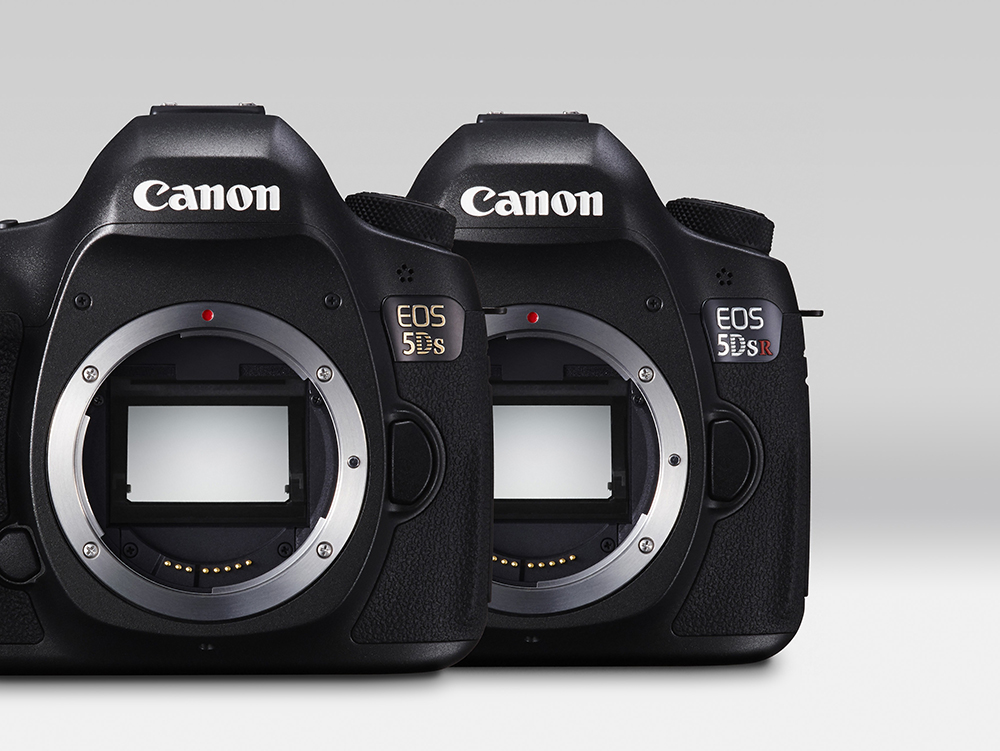 EOS 5DS White Beauty 15