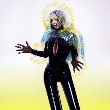 """Omslagsbildet til Björks nye album """"Vulnicura""""."""